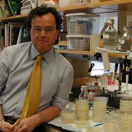 Scoperto 8 nuove molecole  per la cura del morbo di Alzheimer