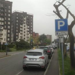 Il cartello c'è, ma non si vede  Pulizia strade: multati i «turisti»