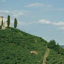 Alta Marca Trevigiana  Dove il weekend è «Superiore»