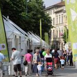 Festival dell'ambiente nel weekend  Davanti al Donizetti un prato verde