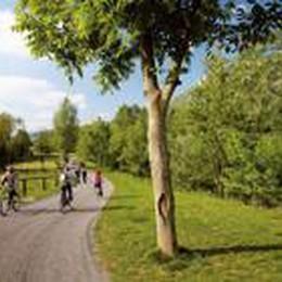 Festa del parco dei Colli  Laboratori, mostre e passeggiate