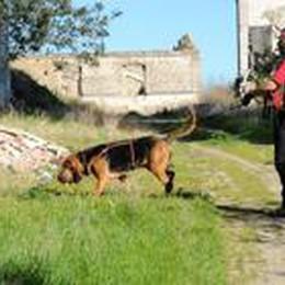 Persone scomparse a Bergamo  Di 199 si sono perse le tracce