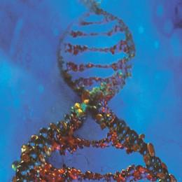 Creato un batterio con DNA potenziato  Pronto un codice con due «lettere» in più