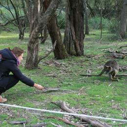 Eleonora, da Verdellino a Melbourne   sognando di diventare archeologa