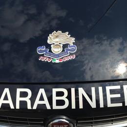 Bicentenario dei Carabinieri  Un logo celebrativo per l'Arma