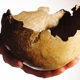 Donizetti, il giallo del cranio trafugato  Usato come portamonete in drogheria