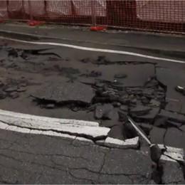 Il «monsone»: asfalto sbriciolato  Cade pianta sulla circonvallazione