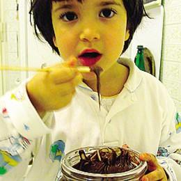 Nocciole decimate dal freddo  C'è il rischio del caro-Nutella