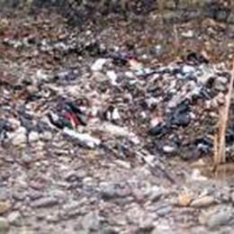 L'inquinamento minaccia il Serio  Federconsumatori lancia l'allarme
