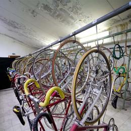 Dalmine, gara al velodromo  I più veloci sono i ladri di bici
