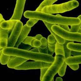 Tubercolosi pediatrica, casi in crescita  Quelli reali sarebbero il 25% in più