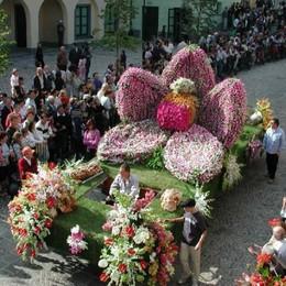 Weekend, trionfano sagre e sapori  Uva e fiori, la gran festa a Foresto