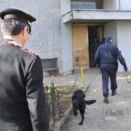 Dai carabinieri appello ai presidi:   «I cani antidroga sono disponibili»