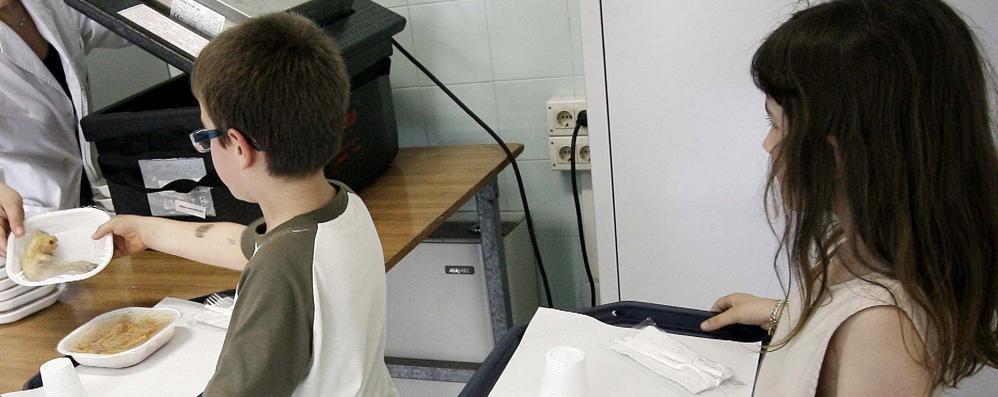 Le famiglie tagliano la mensa Bimbi all'asilo con il cestino