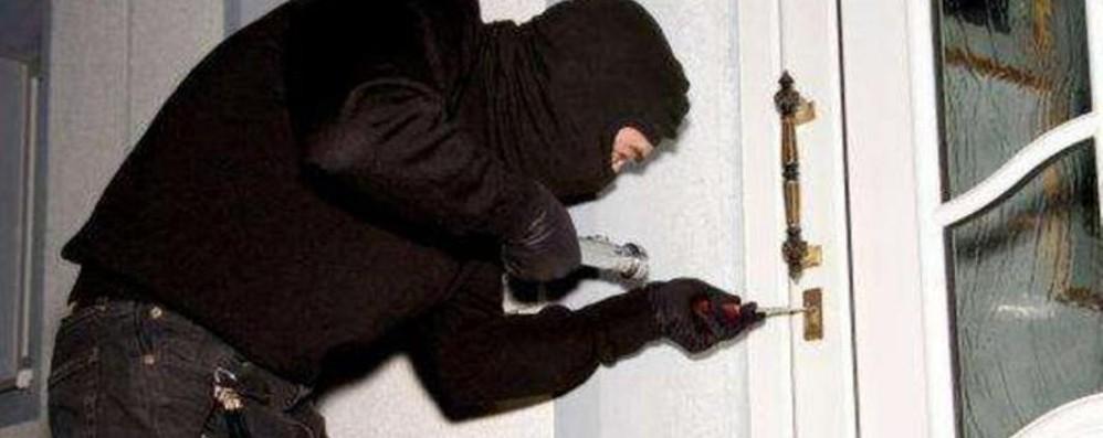 Topi d'appartamento in azione Arrestati: un anno di reclusione