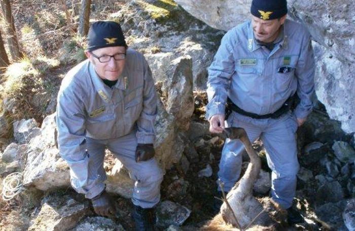 Le guardie forestali che hanno effettuato il ritrovamento