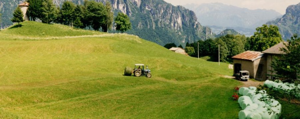 Imu agricola montana Raddoppiano i Comuni esenti