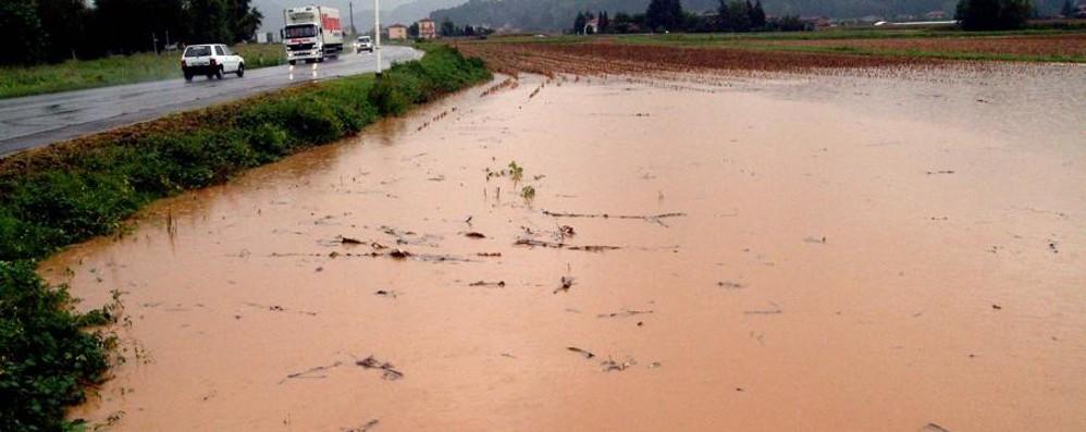 Calamità, dal Governo solo l'1,68% La Regione: «Elemosina irricevibile»