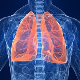 Fibrosi polmonare idiopatica Terapia rallenta il declino delle funzioni