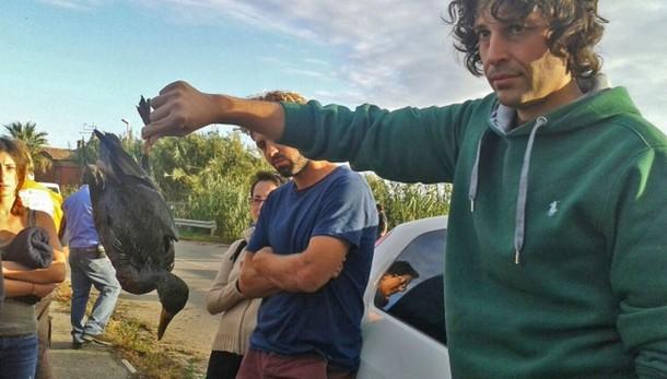 Sequestrato oleodotto a Fiumicino