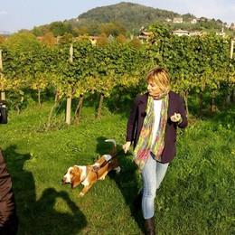 Amici a 4 Zampe, da giovedì  le nuove puntate su Bergamo Tv