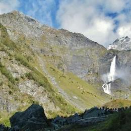 Val Seriana, acqua e biodiversità Un tesoro verde da tutelare - Foto