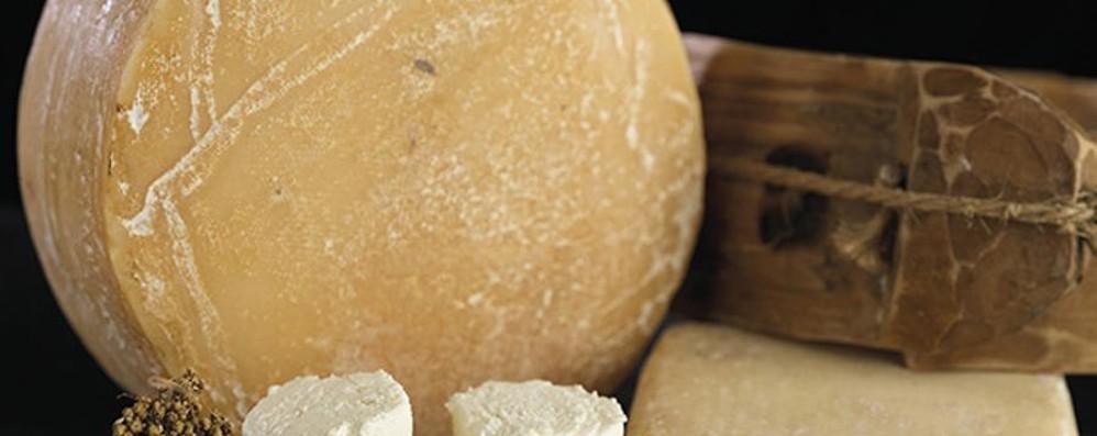 Scoprire il formaggio in 5 appuntamenti