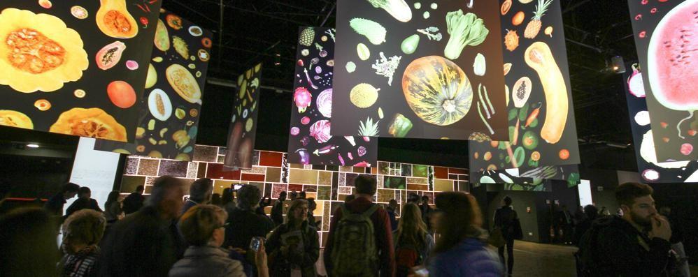 Expo, 600 imprese bergamasche Sfida vinta: lavori per 3,4 miliardi