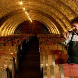 Domus wine I nuovi incontri