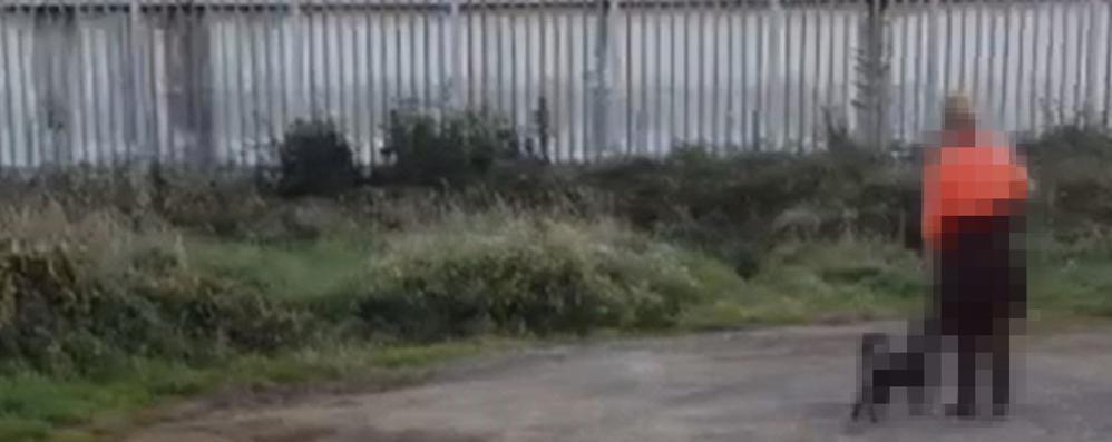 «Mi senti?» Colloqui a cielo aperto detenuti-parenti fuori dal Gleno - Video