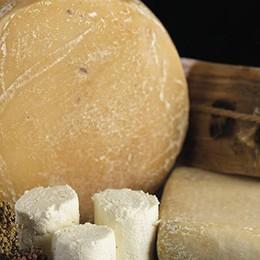 Guerra del formaggio  Martina-Regione In ballo un  bando a favore degli indigenti