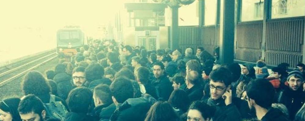 Treni, nuova mattinata di ritardi L'appello a Sorte: problemi strutturali