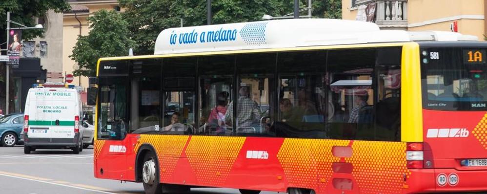 Borgo Santa Caterina chiusa al traffico Domenica i bus cambiano percorso