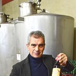 Il Novello perde estimatori  Da 18 a 2 milioni di bottiglie