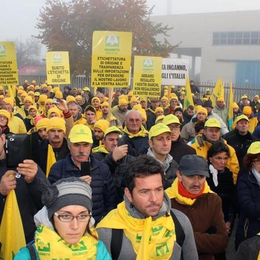 Latte migliaia di allevatori alla protesta il ministro for Offerte lavoro bergamo subito