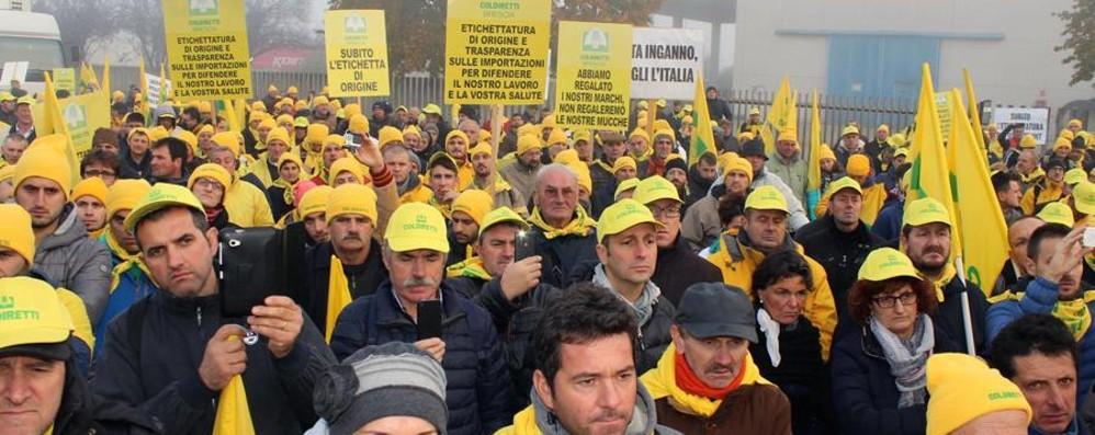 Latte, migliaia di allevatori alla protesta Il ministro Martina: «Atti concreti subito»