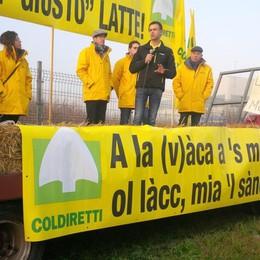 Latte, continua la protesta bergamasca  In 16 mesi bruciati oltre 30 milioni di euro