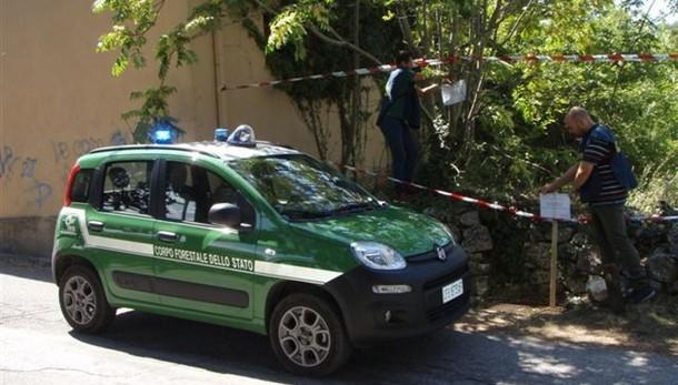 Corruzione:arresti, 5 uomini Forestale