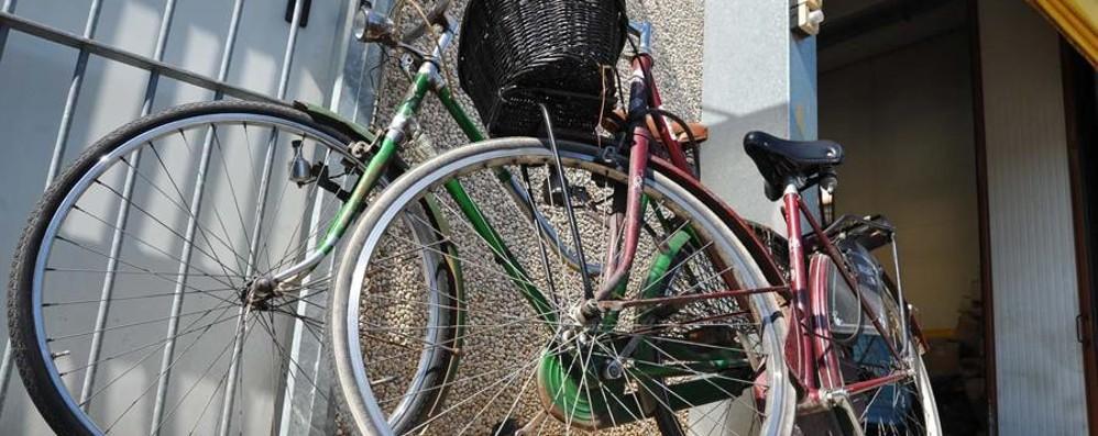 Bollo e targa per le biciclette? Il senatore Pd scatena la rete