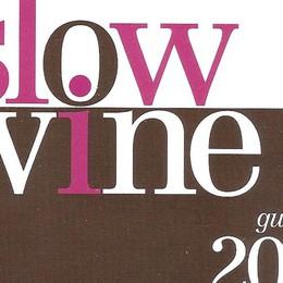 Ecco la guida Slow Wine 2016 Ci sono solo 4 cantine bergamasche