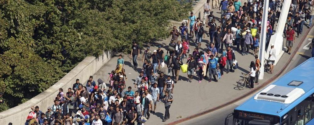 Immigrazione, Telmo Pievani venerdì sera a Longuelo