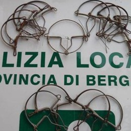 Bracconaggio, raffica di controlli Denunce e trappole sequestrate - Foto