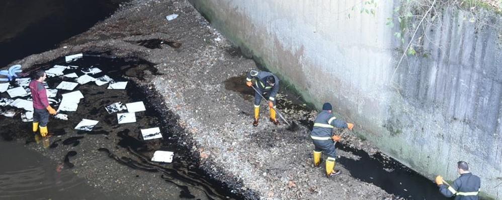 Nafta scaricata nel Morla - Foto e video Le disposizioni del Comune di Bergamo