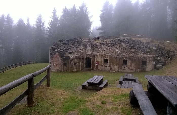 Ex Forte Mero