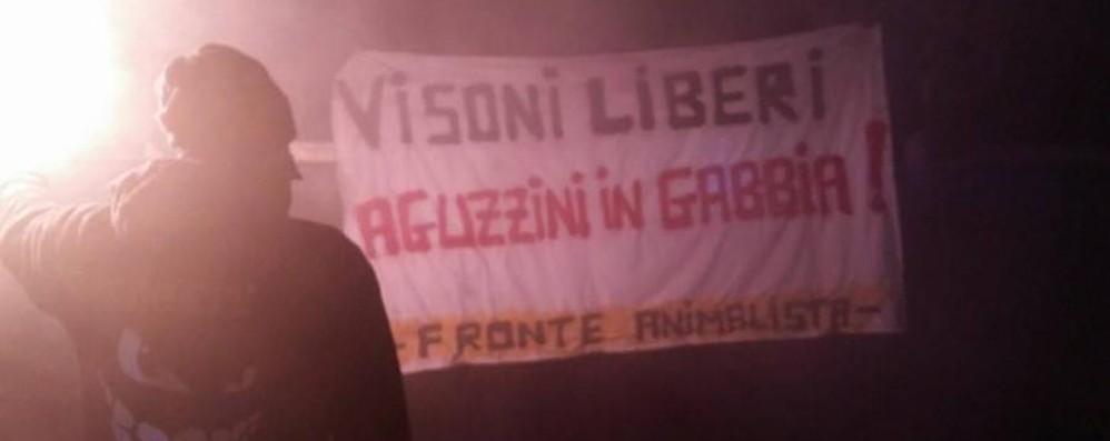 Animalisti, blitz ad Antegnate Cori e striscioni: «Visoni liberi» - Foto
