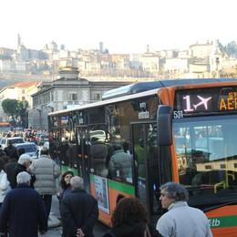 Un Natale a misura di autobus Ecco tutte le proposte dell'Atb