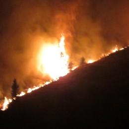 Incendi nei boschi, allerta in Lombardia La Regione: stato di alto rischio - Video