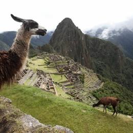 Google Street View sbarca tra le rovine di Machu Picchu - Guarda