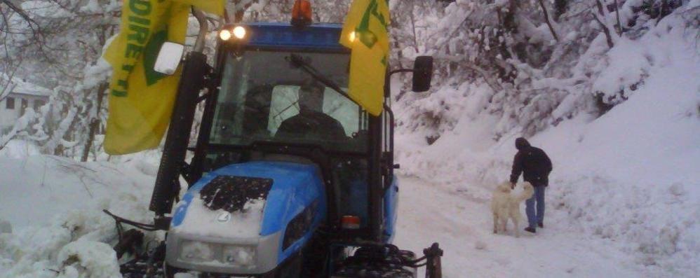 Strade pulite con «Big Snow» In azione i trattori della Coldiretti