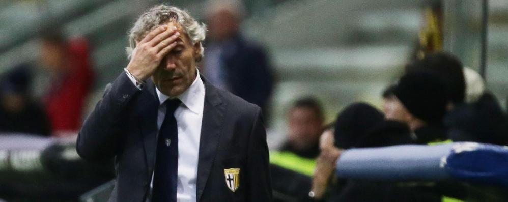 Donadoni: «C'è un limite a tutto Pochi giorni per salvare il Parma»